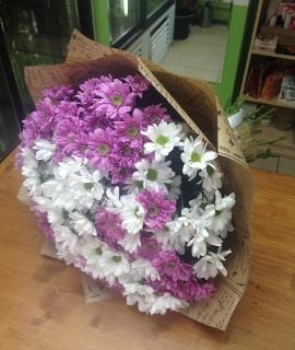 Букет из 19 белых и сиреневых хризантем