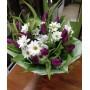 Букет из фиолетовых тюльпанов и хризантем