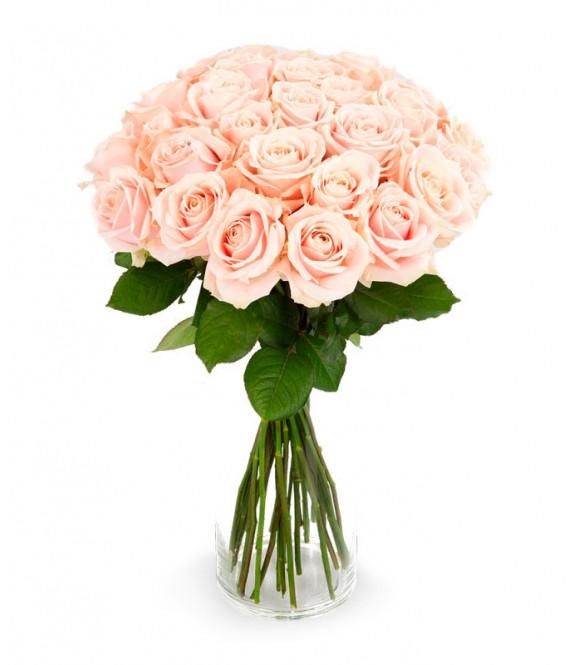 27 розовых роз