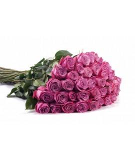 51 роза Moody Blue (Муди Блю)